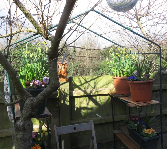 Front Gardener's rest