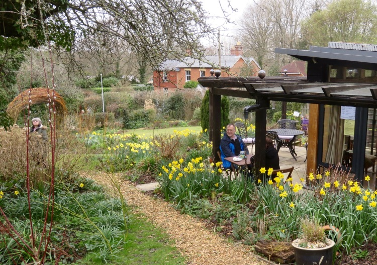Pilley Cottage Garden 1
