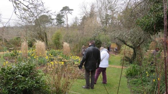 Pilley Cottage Garden 2