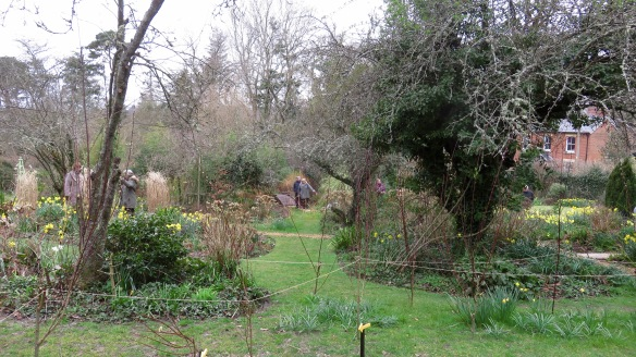 Pilley Cottage Garden 3