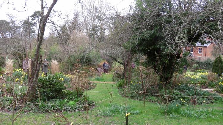 Pilley Cottage Garden 3