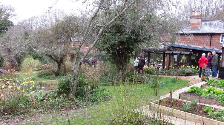 Pilley Cottage Garden 4