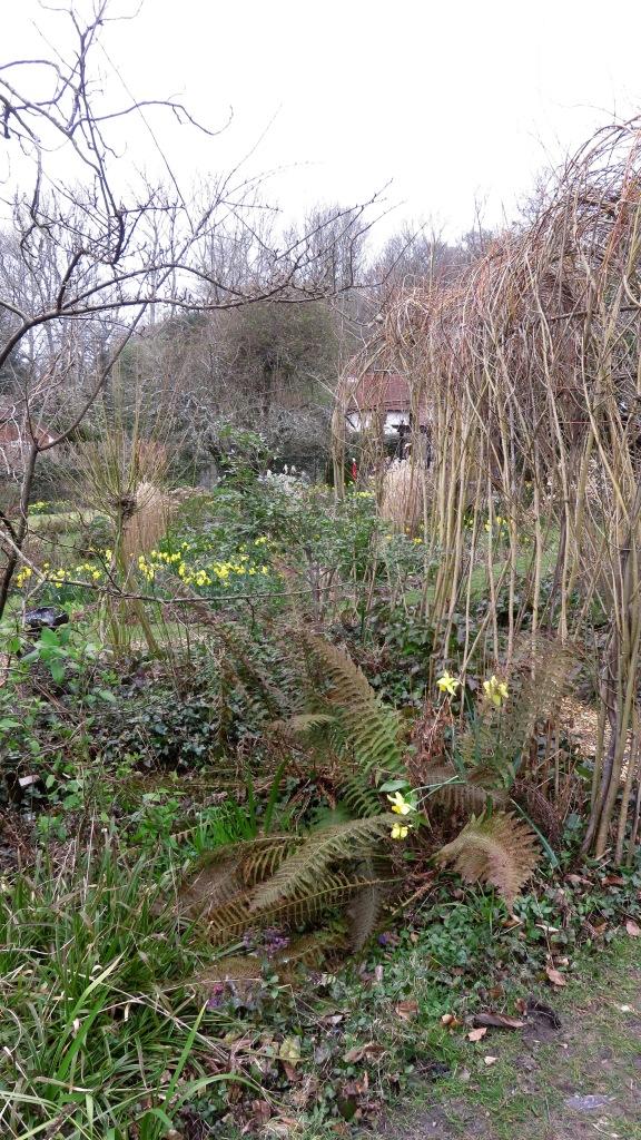 Pilley Cottage Garden 5