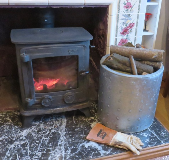 Stove and log bin