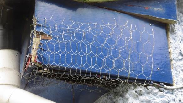 Netting on eaves