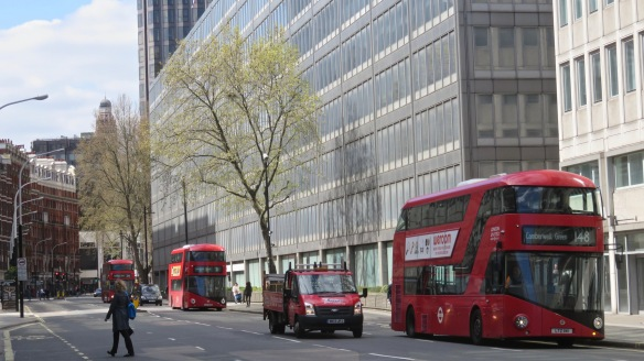 Plane Trees and buses