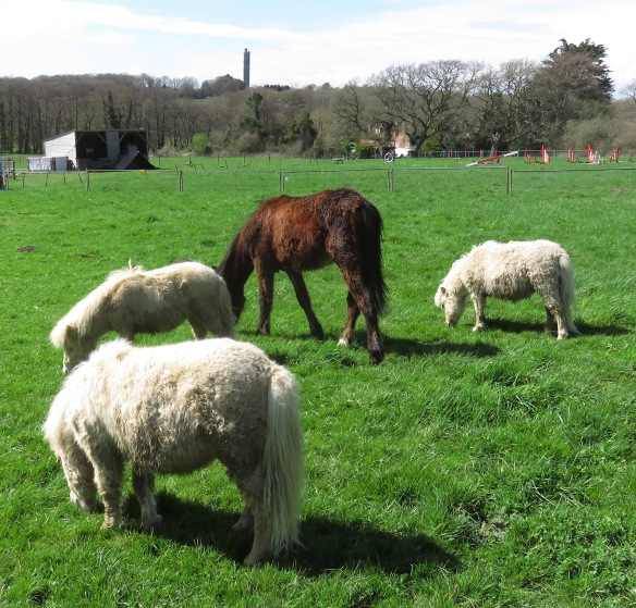 Ponies and Sway Tower 2