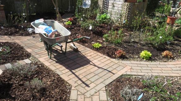 Rose garden mulching