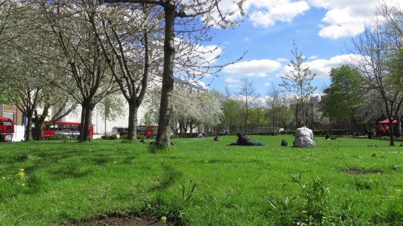 Waterloo Millennium Green