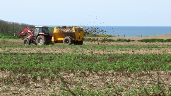 crop fertilising 1