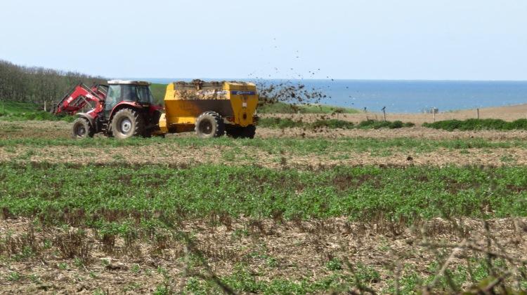 crop fertilising 1