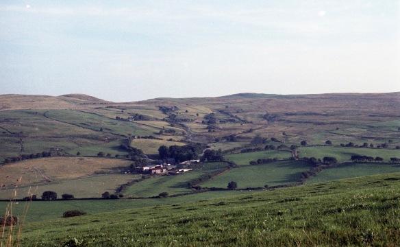 Landscape 1983 2