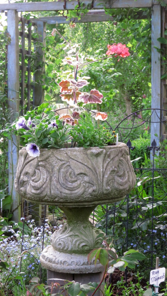 Urn planted up