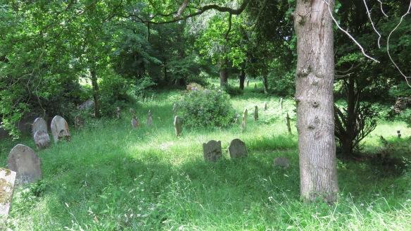 Graveyard St Nicholas's Church 1