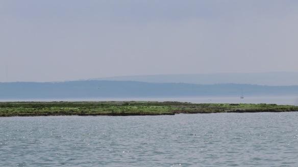 Lymington Marshes