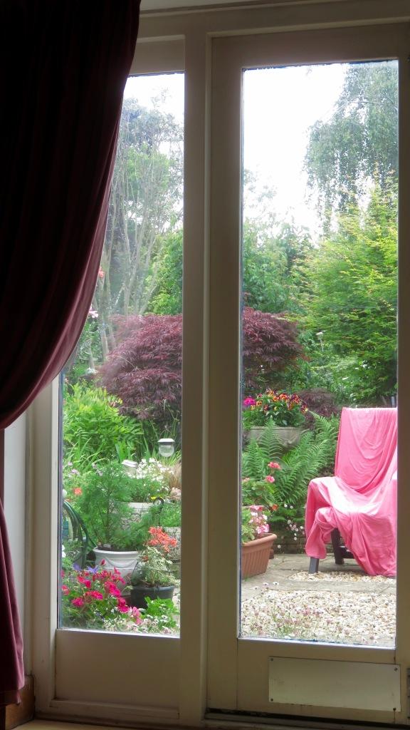 Patio window 1