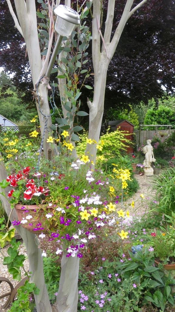 Petunias, bidens, lobelias, geraniums