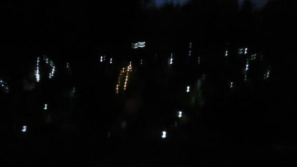 Garden fairy lights 1