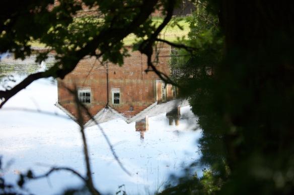 Pond reflection 3
