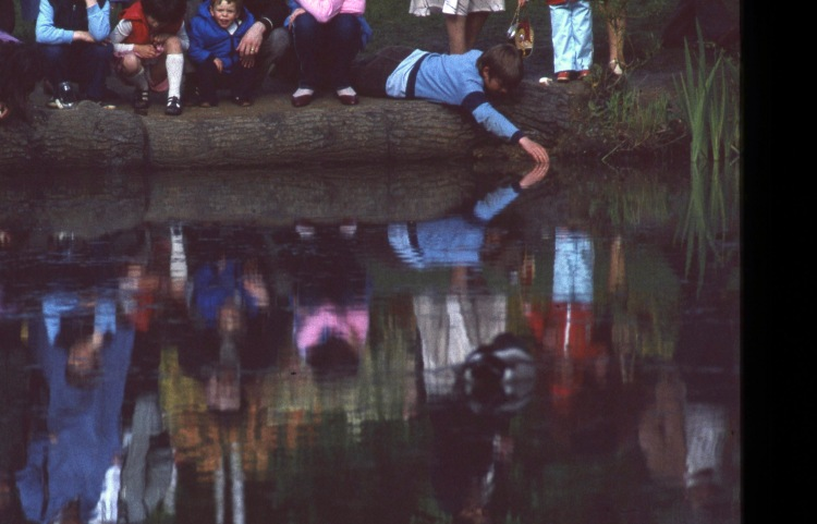 Matthew, crowd, and reflections