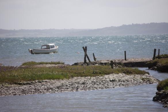 Boat, buoy, and saltmarsh