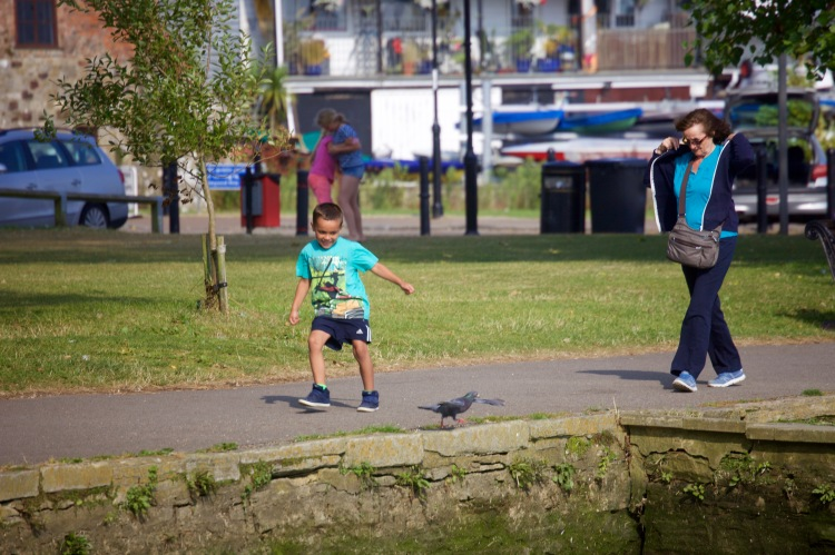 Boy kicking pigeon