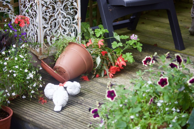 Fallen pot on decking