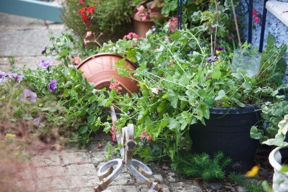 Fallen pot