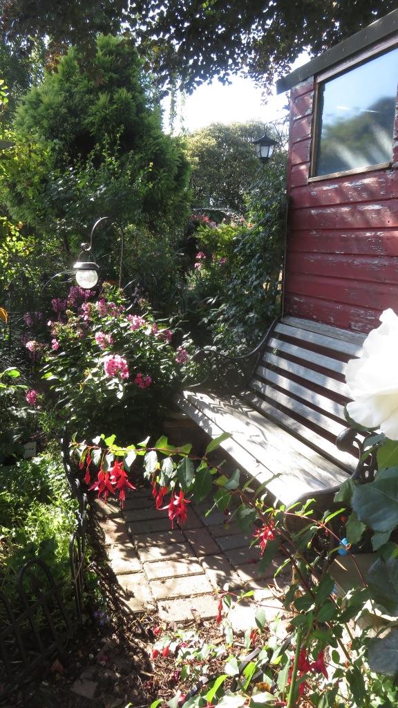 Fuchsia and beyond
