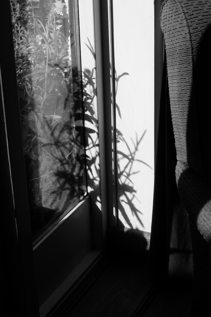 Rorschach shadows