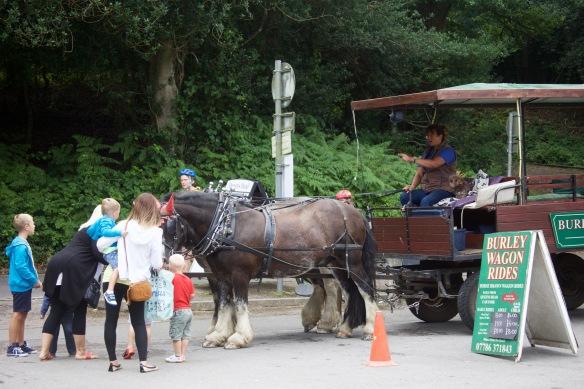 Wagon Ride 1