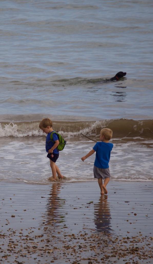 Boys and dog on beach