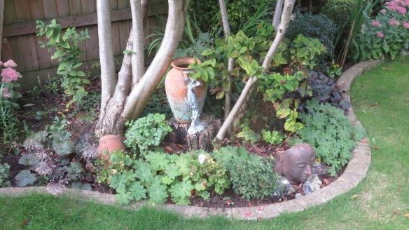 Frances's garden 2