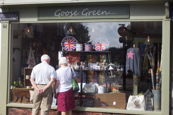 Goose Green window