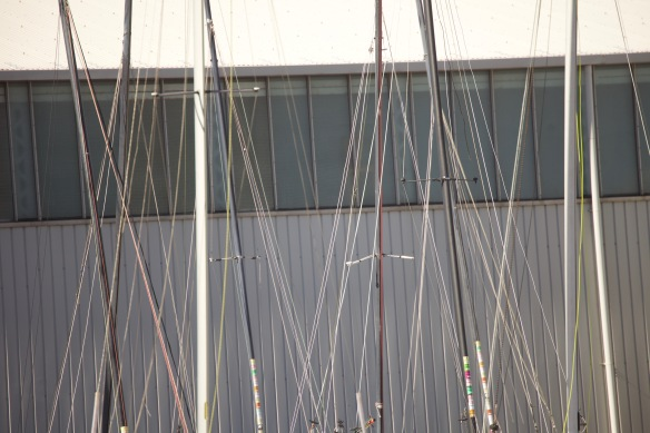Masts and lines