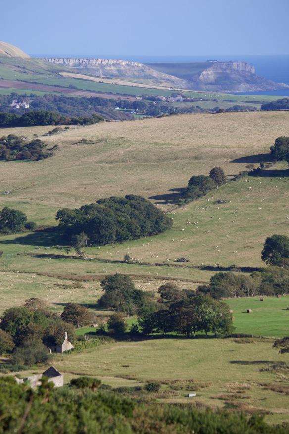 Povington Hillk view 4