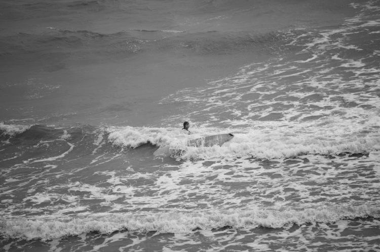 Surfer 6