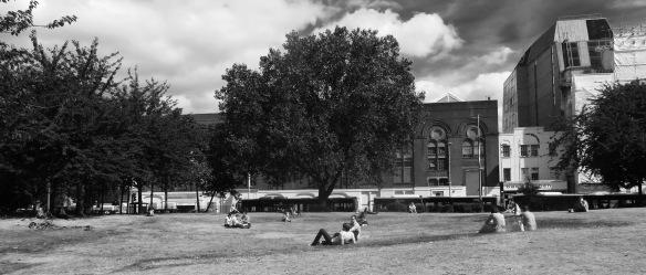 Waterloo Millennium Green 2