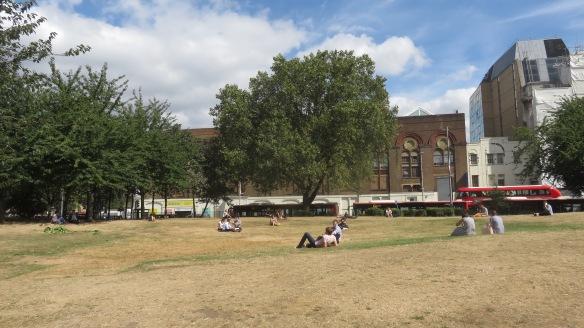 Waterloo Millenium Green 3