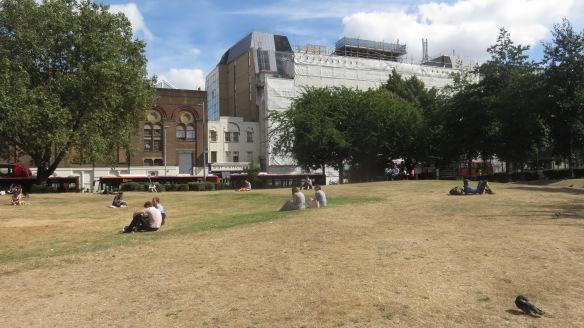 Waterloo Millenium Green 4