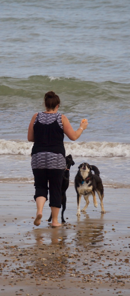 Woman and dogs on beach 1