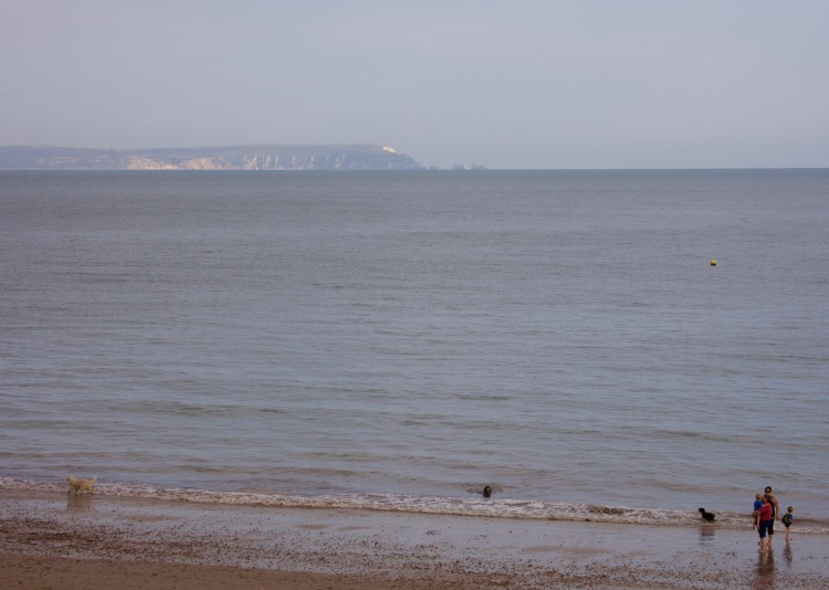 Pewople and dogs on beach, Isle of Wight, The Needles