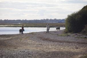 Couple with donkeys