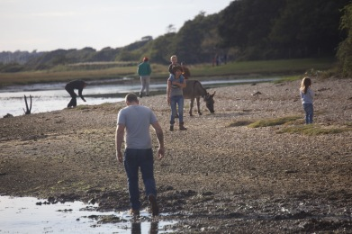 Family and donkey on beach