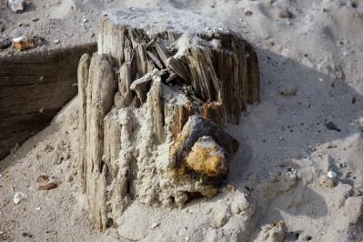 Breakwater stump