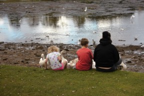 Children and swans