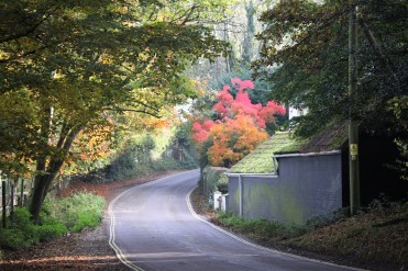 road into Burley