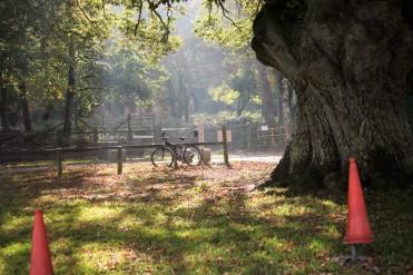 Bicycle on railing scene