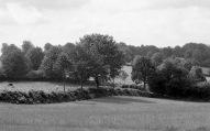 Landscape 1985 2