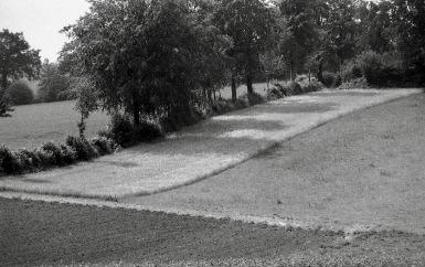 Landscape 1985 3